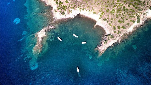 Koy cenneti Türkiye'ye akın başladı
