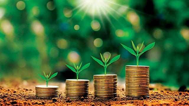 Tarımda finansman bankalar ve hibelerle sağlanıyor