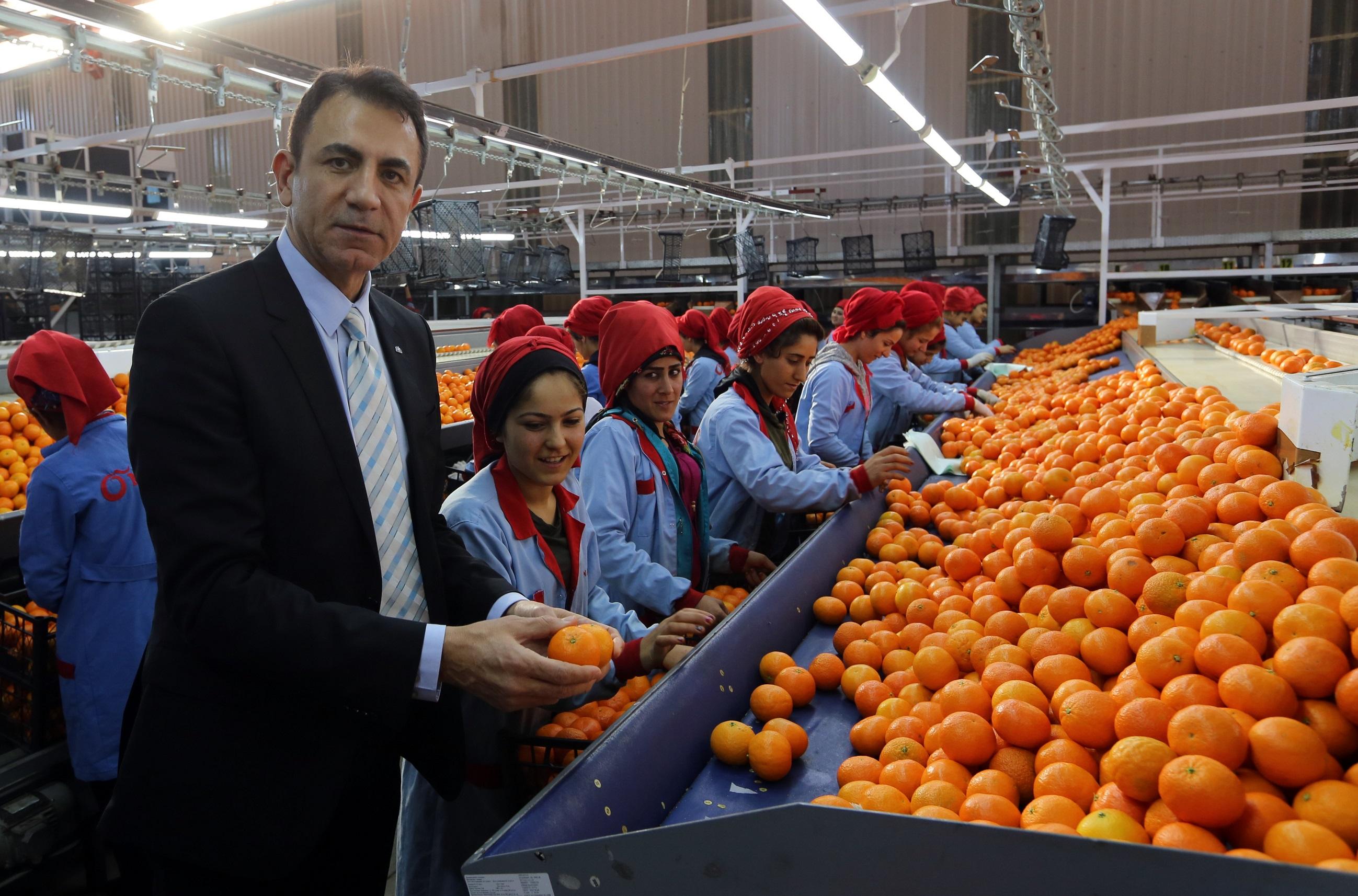 Akdeniz'den ihracat 13.5 milyar dolara ulaştı