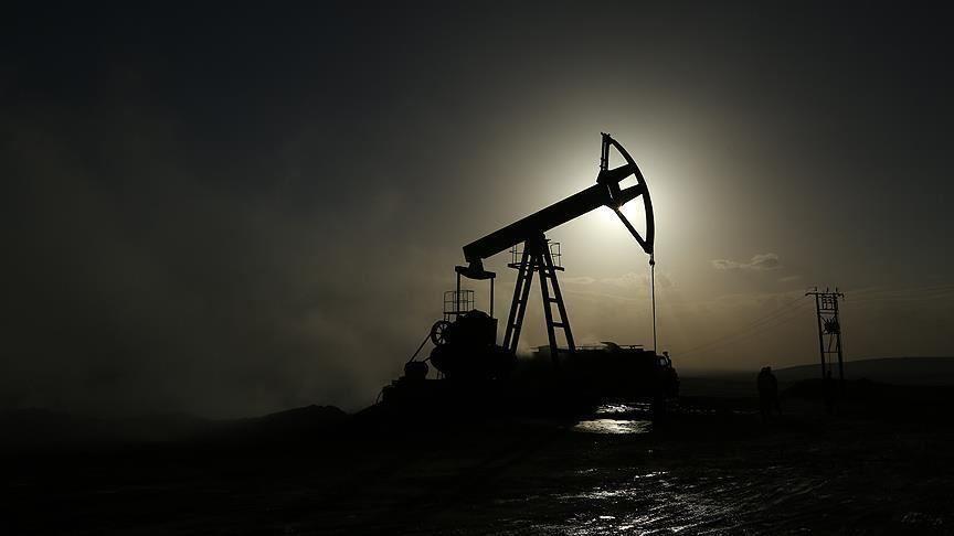 IEA Başkanı Birol: 2020, küresel petrol tarihinin en kötü yılı