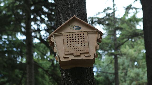 Hero Baby, 'Arı Evim Geleceğim' projesi ile 50 Milyon arıyı doğaya kazandıracak