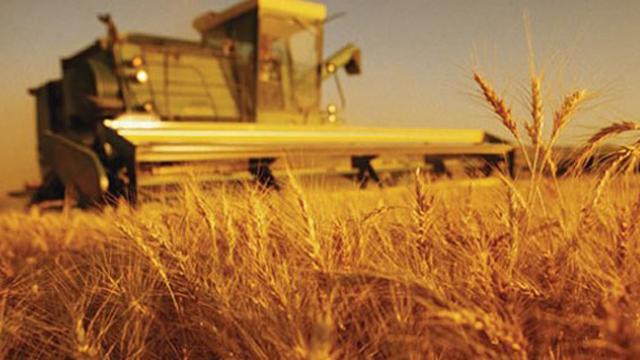 Tarıma 14.5 milyar TL'lik hibe verilecek