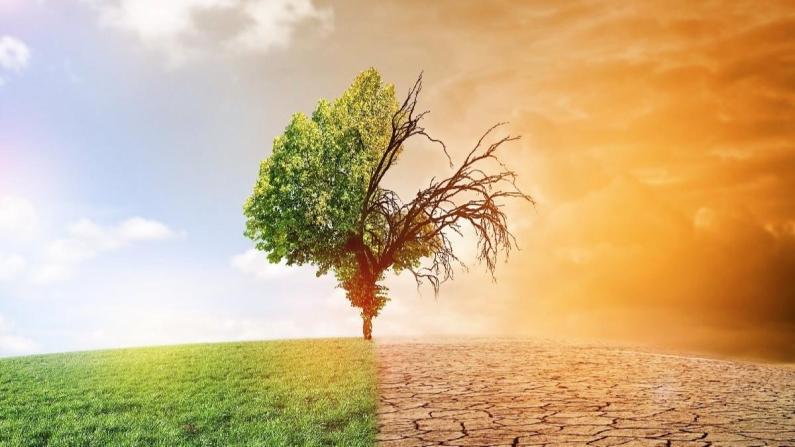 Küresel ısınmanın maliyeti 30 trilyon doları bulacak