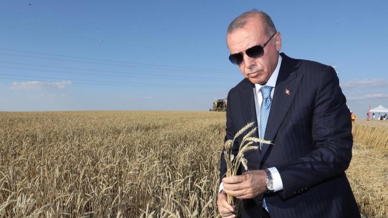 Cumhurbaşkanı Erdoğan'dan talimat: TMO'dan çiftçiye destek geliyor
