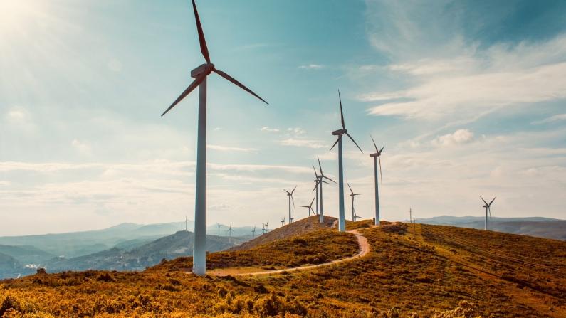 Rüzgar enerjisi hız kesmeyecek