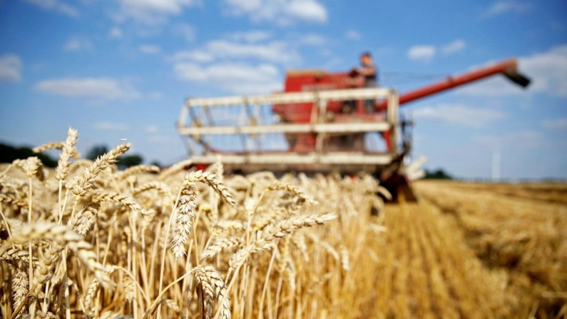Gıdanın ve tarımın geleceği