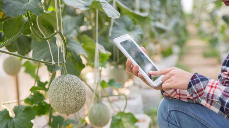 Çiftçilerde eğitim oranı ve internet kullanımı artıyor