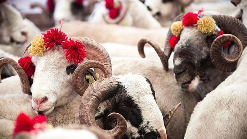 Kurban Bayramı tatili piyasaları canlandıracak