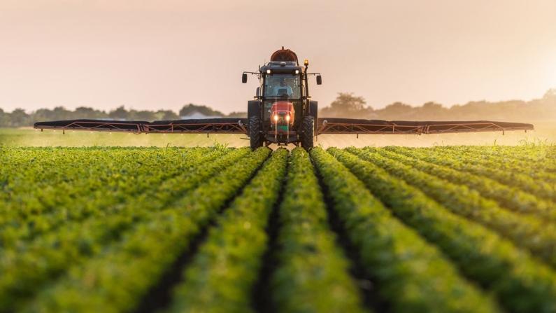 Tarım Kredi'den çiftçiye 600 milyon TL faizsiz kredi
