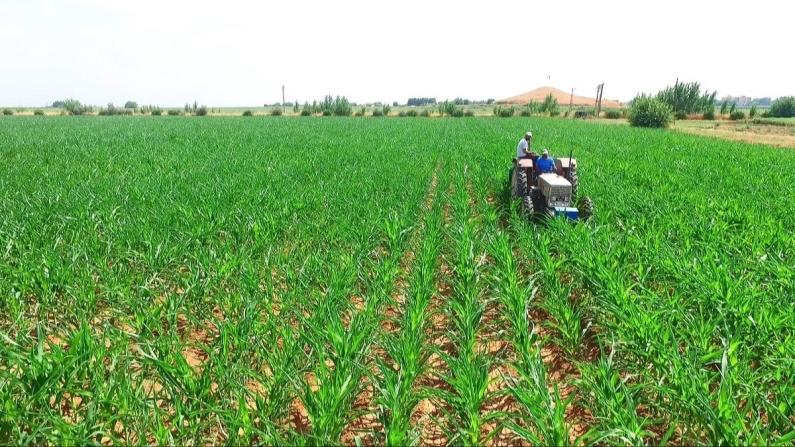 Çiftçiye yıl sonuna kadar 10 milyar lira kredi