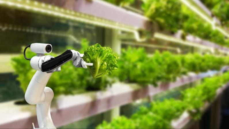 Tarımsal Ar-Ge projelerine 30 milyon lira destek