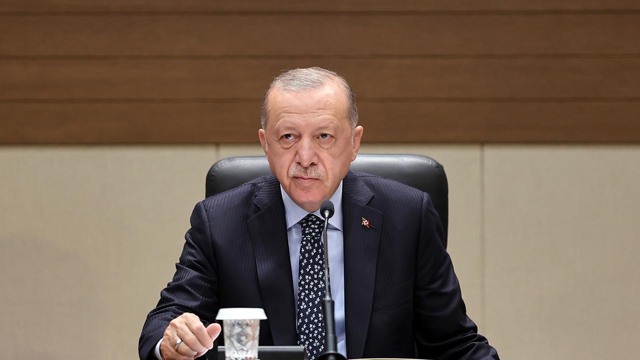 Erdoğan: Zincir marketlerdeki fiyat farklılıklarının üzerine giderek kaldıracağız