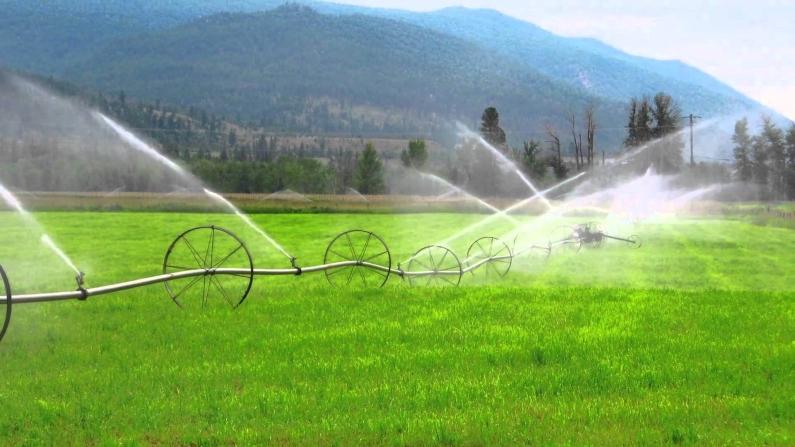 """""""Suya göre tarım"""" başladı"""